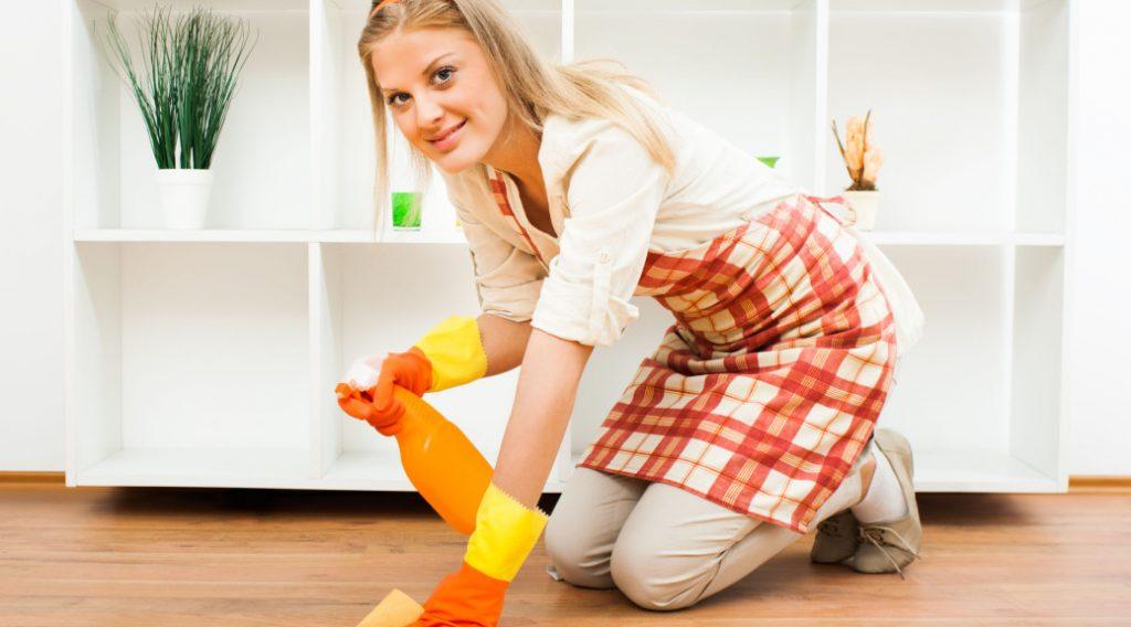 irving maid service